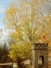 Cruz Cerrada en otoño